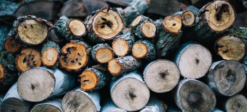 Косівський лісник виявив незаконно зрубані дерева, а далі сам їх продав