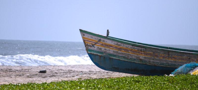 Понад 300 мігрантів загинули у морі за останні два дні, – МОМ