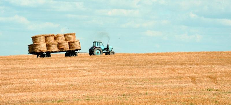 Патрульні просять не возити зерно через Франківськ