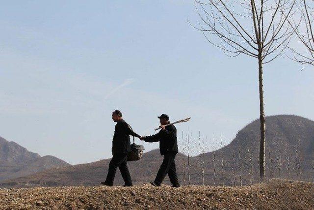 Сліпий чоловік та його безрукий друг висадили 10 000 дерев у Китаї (фото)
