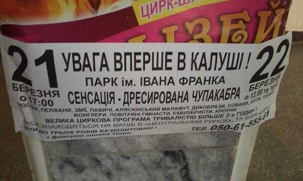 У Калуш везуть дресировану чупакабру (ФОТОФАКТ + ВІДЕО)