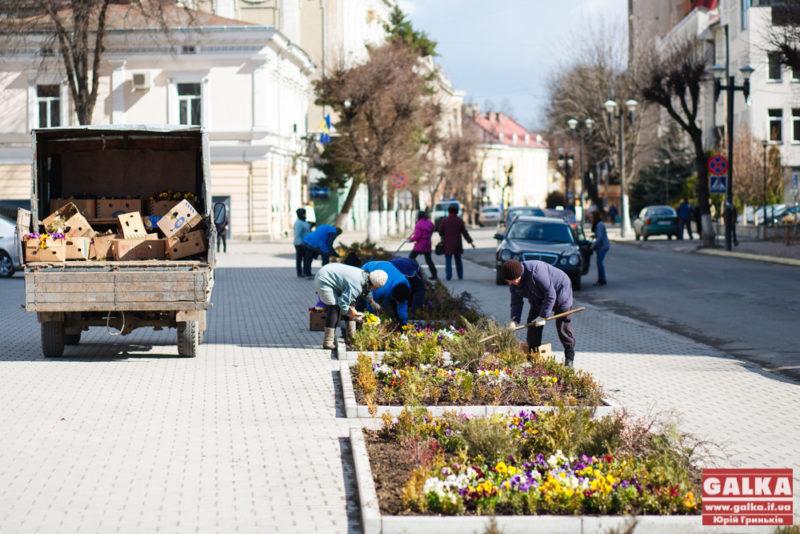 Перед адмінбудівлею висаджують квіти (ФОТО)