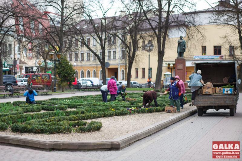 На клумбі біля пам'ятника Міцкевичу висаджують квіти (ФОТО)
