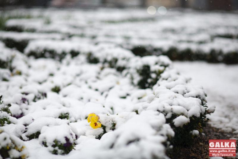 Сніг на весні, погода, сезон-5087