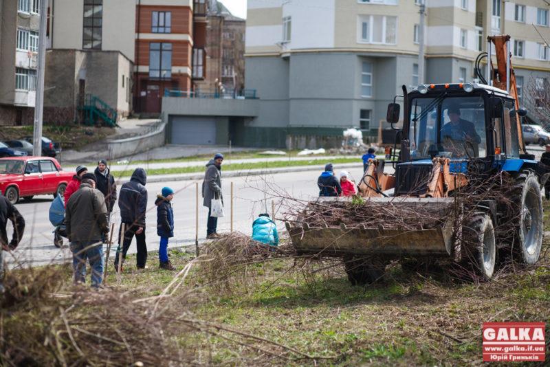 Громадські активісти розчистили хащі на вулиці Гурика (ФОТО)