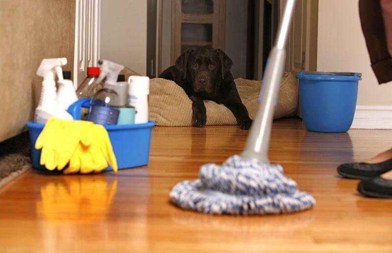 """""""Галка"""" рекомендує: 12 практичних порад для прибирання вдома (ФОТО)"""