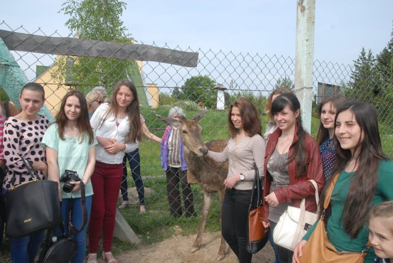 Школярі та студенти допомагають Центру реабілітації диких тварин