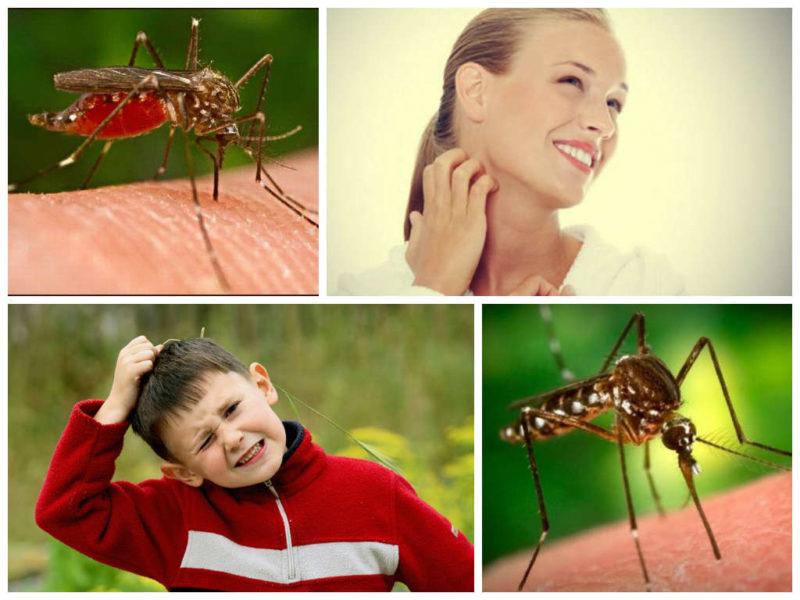 kak-snyat-zud-ot-ukusa-komara