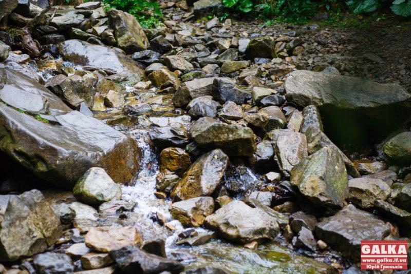 На одній з прикарпатських річок планують встановити автоматизовані спостережні пости