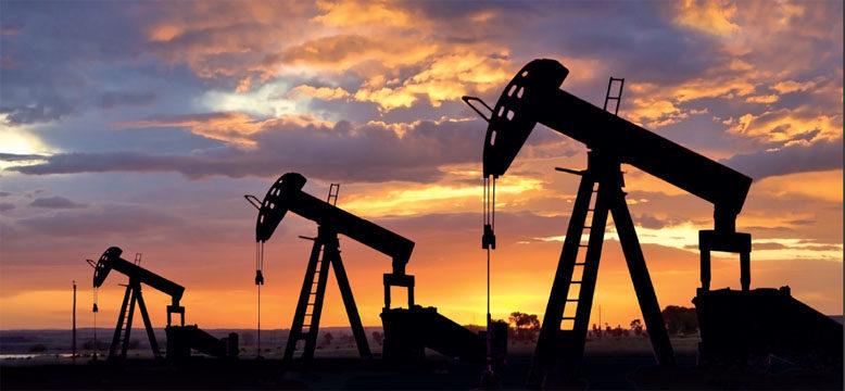 """На прикарпатському видобувному майданчику """"Укрнафти"""" стався викид нафти – забруднена фермерська земля"""