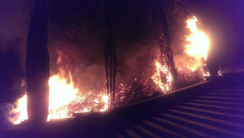 Минулої доби на Прикарпатті виникло 4 пожежі