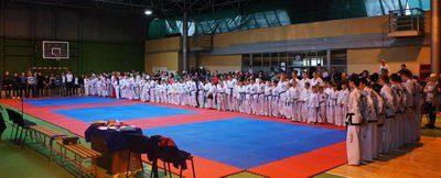 У Франківську відбулося масштабне змагання з таеквон-до, у якому взяли участь три чемпіони світу (ФОТО)