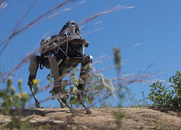 У США хочуть навчити роботів передбачати наміри людей