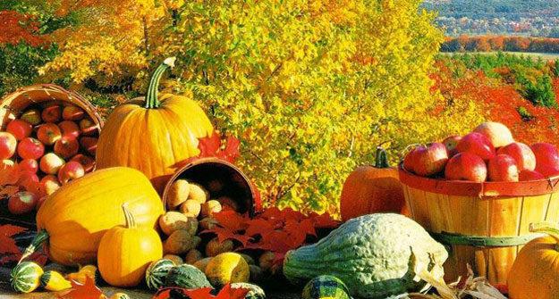 Осінні продукти для краси і здоров'я