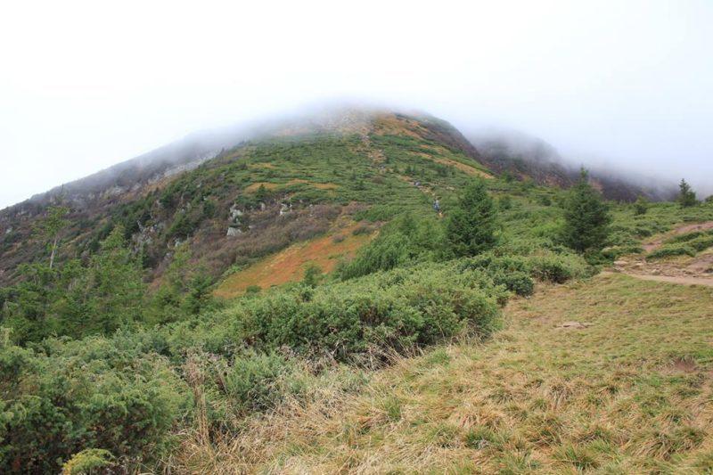 У горах розшукували двох 15-літніх школярок