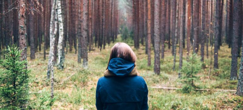 Прикарпатцям радять, як не заблукати в лісі