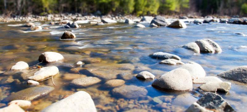 У Яремче на березі річки знайшли тіло чоловіка
