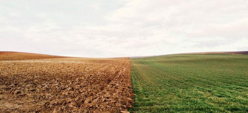 Ще вісім франківських учасників АТО зможуть отримати земельні ділянки