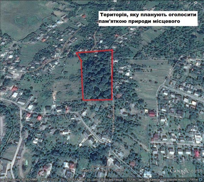 В Калуші з'явиться перша ботанічна пам'ятка природи «Височанські дуби» (ФОТО)