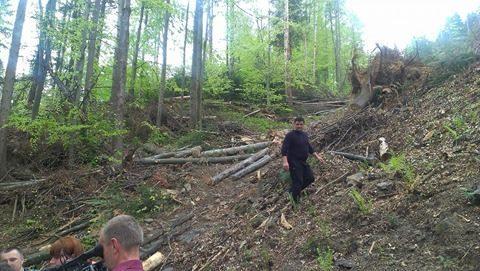 Косівчани показали міністру екології вражаючі масштаби вирубок Карпат у охоронній зоні (ФОТО)