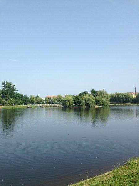 У Коломиї не дали стрибнути з моста в озеро п'яному чоловікові