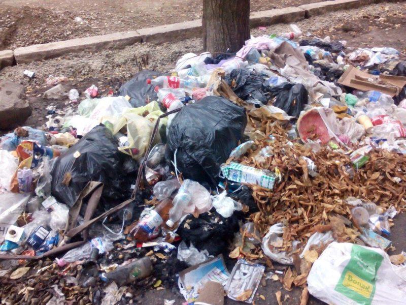 Жителі Франківська влаштували смітник на вулиці Гнатюка (ФОТО)