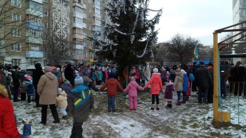 Зрізана на території 16 школи ялинка прикрасила новорічний двір на Пасічній (ФОТО)