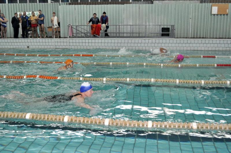 Викладачі франківського вишу позмагалися у плаванні (ФОТО)