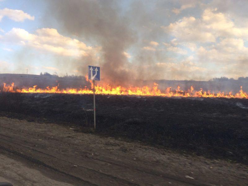 Поблизу Долини горять поля (ФОТО)