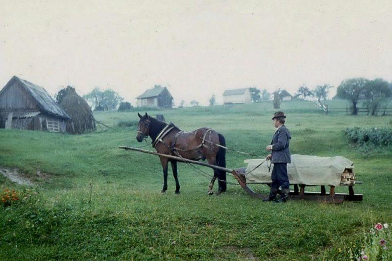 Франківський фотограф опублікував архівні фото, зняті на Гуцульщині (ФОТО)