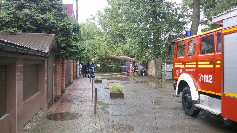 Після негоди рятувальники розрізали 10 повалених дерев та звільнили заблоковане авто