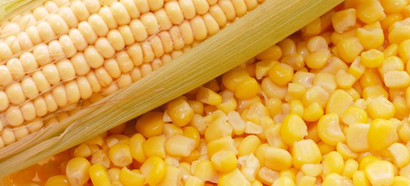 Галка рекомендує: як треба їсти варену кукурудзу