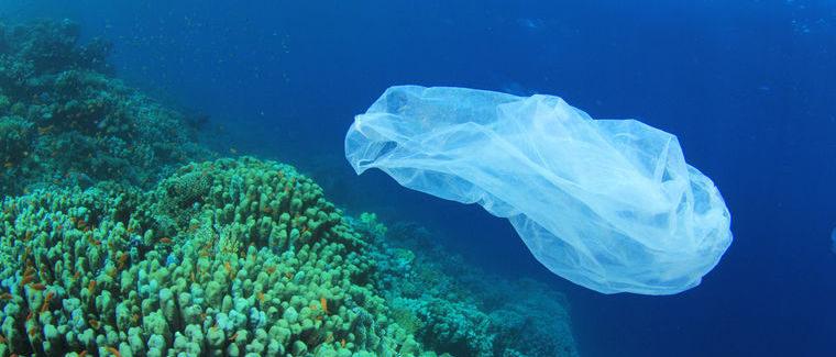 Все сміття у Світовому океані показали на інтерактивній мапі