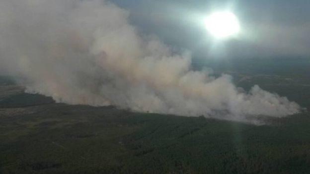 На Житомирщині горять 120 гектарів заповідника