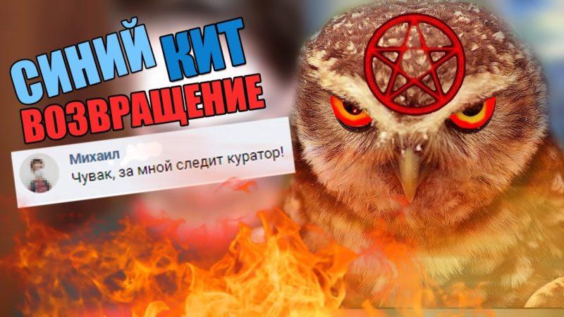 Росія запустила нову смертельну гру для підлітків – Красная сова
