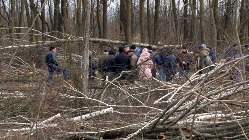На Надвірнянщині люди обурені діями місцевого агролісгоспу (ВІДЕО)
