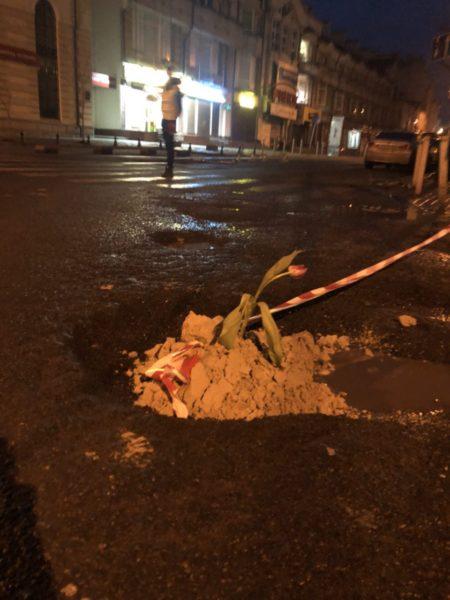 Вночі у ямах на франківських дорогах висадили квіти (ФОТО)