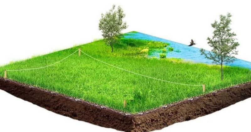 На Прикарпатті прокуратура повернула у власність держави ще майже 80 га землі