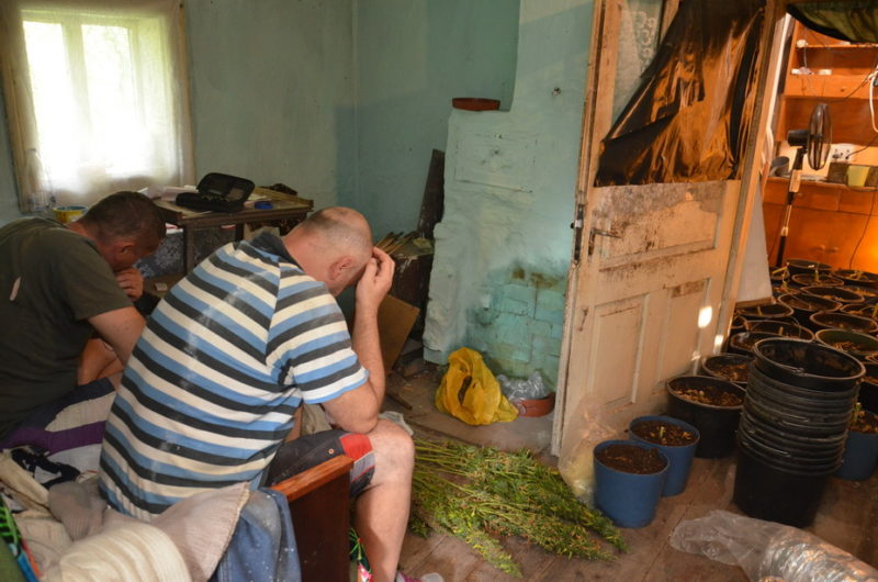 Багато наркотиків та зброї – СБУ затримала двох братів, котрі організували масштабний наркобізнес (ФОТО, ВІДЕО)