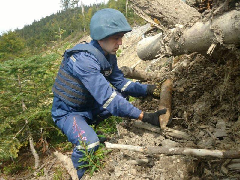Два десятка боєприпасів знайшли неподалік Тлумача