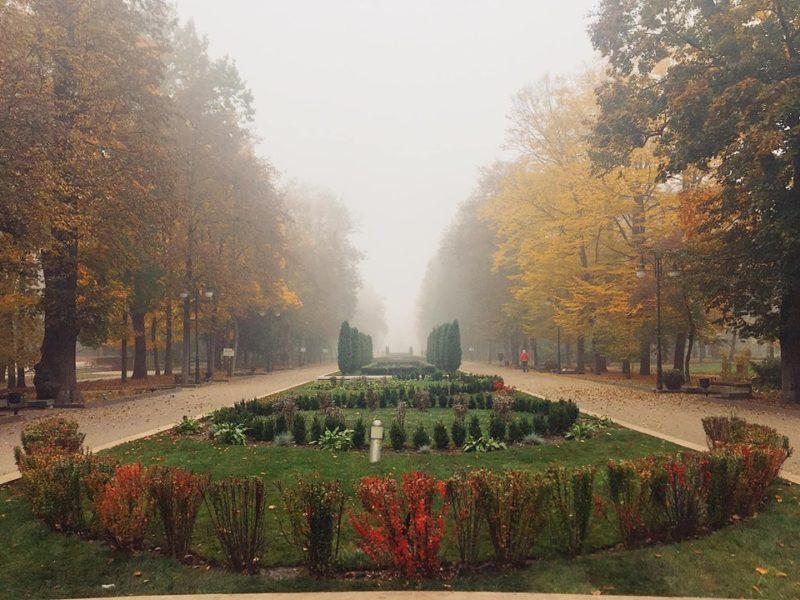 У мережі з'явилися чарівні світлини осіннього франківського парку (ФОТО)
